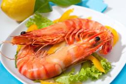 shrimpmazatlan