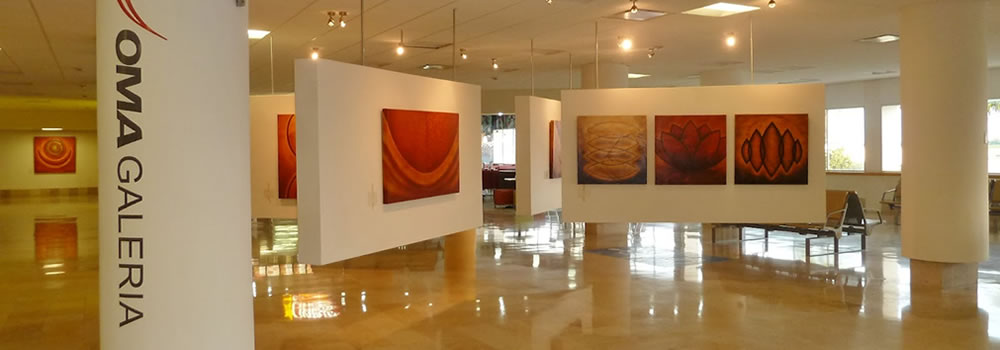 """Character"" in the Gallery of Mazatlan Airport"