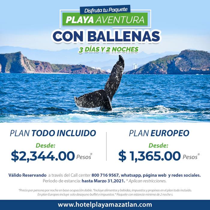 Paquete Playa Aventura con Ballenas